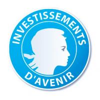 Labex Investissements d'Avenir
