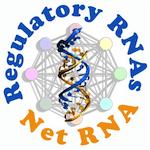 NetRNA